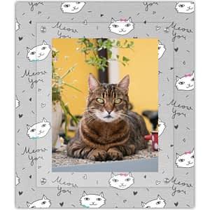 The cats meow feline frame
