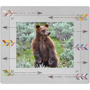 Grizzly Bear in a Modern Angle Picture Frame